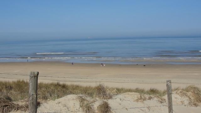 © Jane Dean Wassenaar Beach, Netherlands
